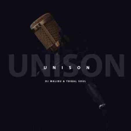 DJ Malibu & Tribal Soul – Unison