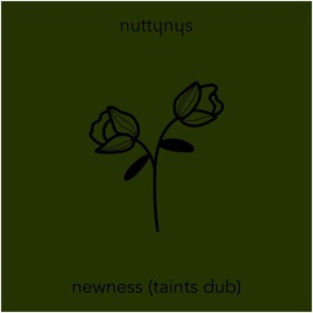Nutty Nys – Newness (Taints Dub)