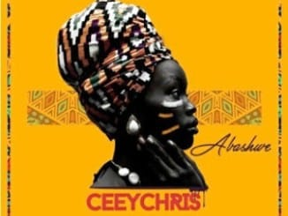 CeeyChris, Abashwe, mp3, download, datafilehost, fakaza, DJ Mix
