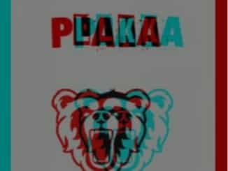 DJ Plaka SA, Maybe, mp3, download, datafilehost, fakaza, DJ Mix