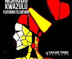Mshudu, KwaZulu, Felemtwini, mp3, download, datafilehost, fakaza, DJ Mix