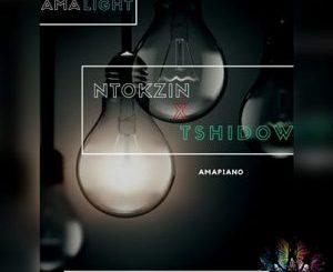 Ntokzin, Tshidiso, Vibe, Dzedze, Ama lights (Vocal Mix), mp3, download, datafilehost, fakaza, DJ Mix