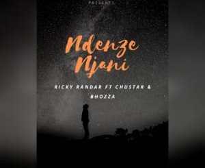 Ricky Randar, Ndenze Njani, Chustar, Bhozza, mp3, download, datafilehost, fakaza, DJ Mix