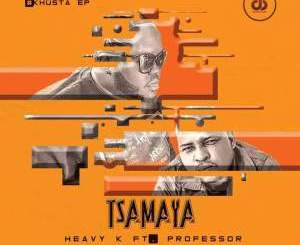 Heavy K, Tsamaya, Professor, mp3, download, datafilehost, fakaza, DJ Mix