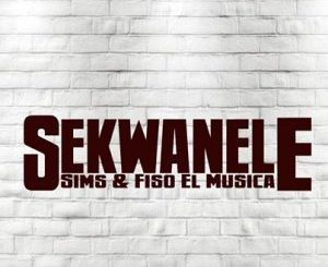 Sims, Fiso El Musica, Sekwanele, video, mp3, download, datafilehost, toxicwap, fakaza