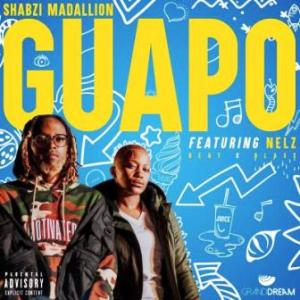 DOWNLOAD mp3: ShabZi Madallion ft Nelz  Guapo fakaza 2018 2019 gqom amapiano afrohouse music mp3 download