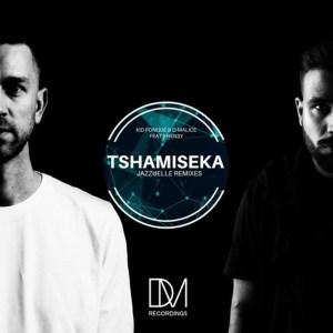 Kid Fonque & D-Malice, Khensy – Tshamiseka (Jazzuelle Remixes)-fakazahiphop