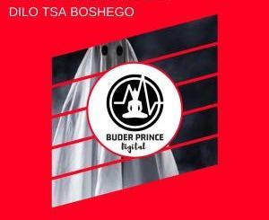 Infinte Motion – Dilo Tsa Boshego