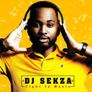 DJ Sekza – Fight in Music (Album)