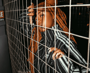 Dee Koala – Ndintswempu Ft. Amilca Mezarati & SimulationRxps