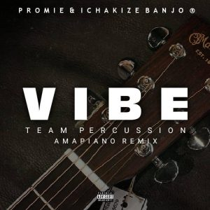 Team Percussion – Vibe (Amapiano Remix)