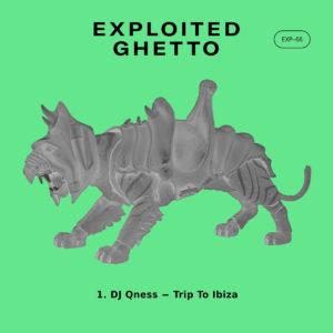 DJ Qness – Trip To Ibiza