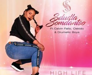 Sdludla Somdantso Ft. Calvin Fallo – High Life (Amapiano Mix)