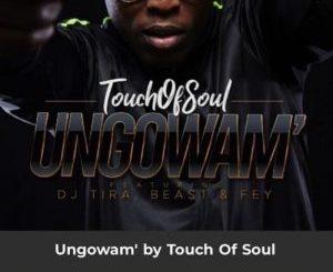 Touch of soul – Ungowam' Ft. DJ Tira, Beast & Fey