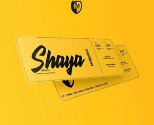 Mshayi – Shaya Ft. T-Man, Mr Thela, Chustar, Taboo no Sliiso