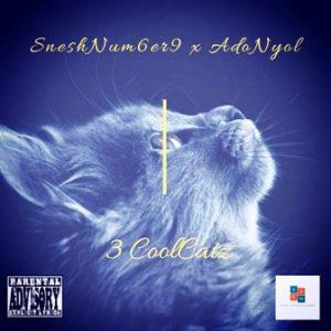 SneshNum6er9 & Adonyol – 3 CoolCatz
