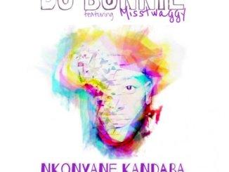 DJ Bonnie, Misstwaggy – Nkonyane Kandaba (Original Mix)