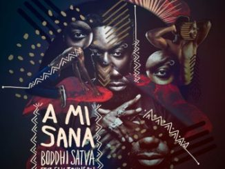 Boddhi Satva – A Mi Sana (Dance With Me) Ft. Sly Johnson