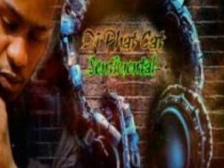 DJ Phat Cat – Sentimental (Radio Edit)