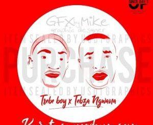 Tsebe Boy & Tebza Ngwana ft Fearless Elements – Sgubhu sa Pitori (Volume 1)