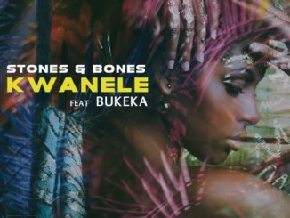 Stones & Bones – Kwanele (Original Mix) Ft. Bukeka