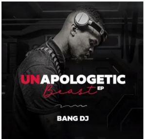 BangDJ – Unapologetic Whistle