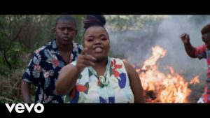 Distruction Boyz – Ubumnandi Ft. DJ Tira, Dladla Mshunqisi & Feerless Boyz