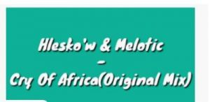 Hlesko'w & Melotic – Cry Of Africa (Original Mix)