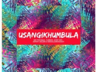 Kid Fonque, Cuebur, Andyboi, Jonny Miller & Okmalumkoolkat – Usangikhumbula