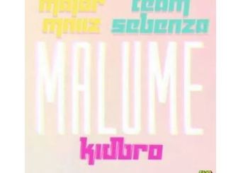 Major Mniiz & Team Sebenza – Malume Ft. Kidbro