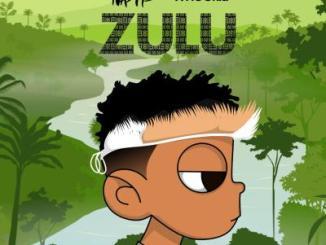 Nasty C & DJ Whoo Kid – Zulu