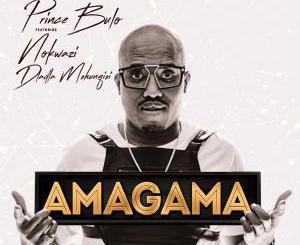Prince Bulu – Amagama Ft. Nokwazi & Kyotic (Felo Le Tee Remix)