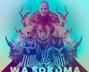 Boddhi Satva & Boule Mpanya – Wa Sokoma