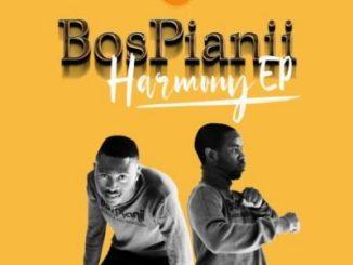 BosPianii – Harmony