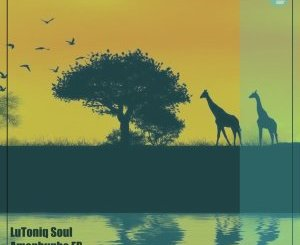LuToniq Soul – Amaphupho