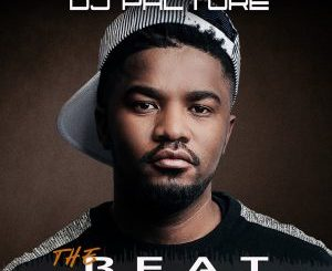 Dj Palture – The Beat