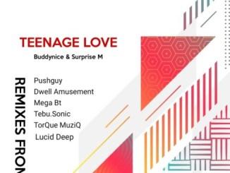 Buddynice & Surprise M – Teenage Love (Remixes)