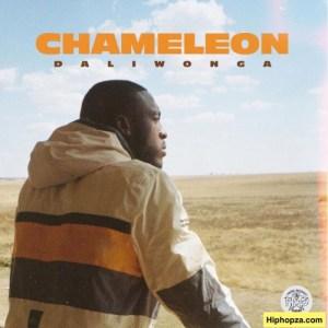 Daliwonga – Chameleon (Artwork + Tracklist)