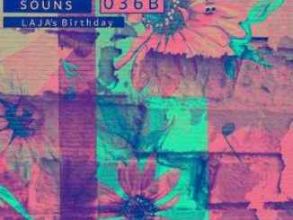De nolo ZA – WHSSounds 036B Mix (Tribute To Laja Maseko)