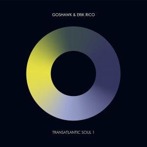 Erik Rico & Goshawk – Transatlantic Soul 1