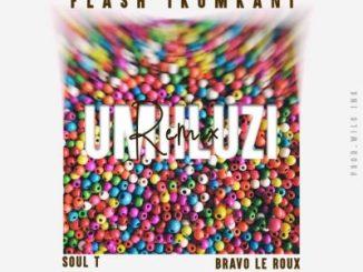 Flash iKumkani – Umhluzi (Remix) Ft. Soul-T iDyan & Bravo Le Roux