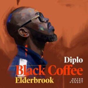 Black Coffee – Never Gonna Forget Ft. Diplo & Elderbrook