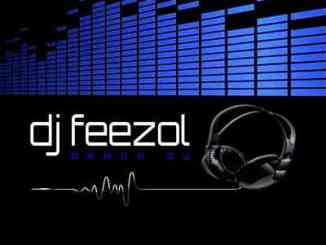 DJ FeezoL – Dr's In The House Mix (30.01.2021)