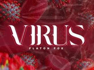 DJ Flaton Fox – Virus (Original Mix)