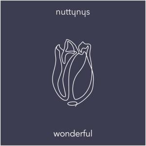 Nutty Nys – Wonderful (Original Mix)