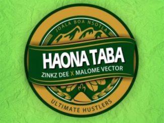Zinkz Dee – Haona Taba Ft. Malome Vector