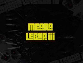 Mc'SkinZz SA – Mfana Lebop III