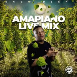 Snow Deep – Amapiano Live Mix