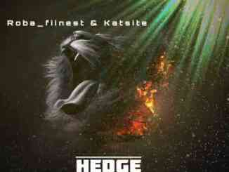 Roba Fiinest & Katsite – Hedge (Main Mix)