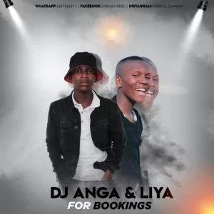 Dj Anga & Liya – Hai Mfe2